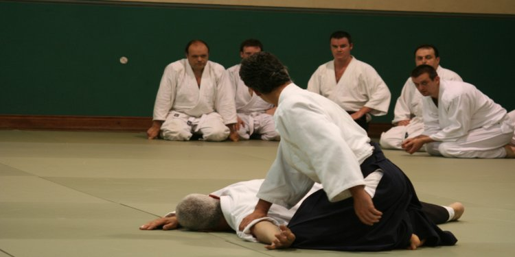 Aikido 2016 screenshot 5