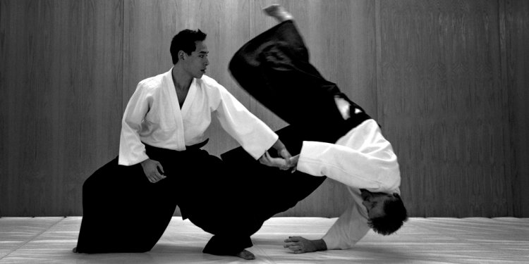 Aikido (Image Source