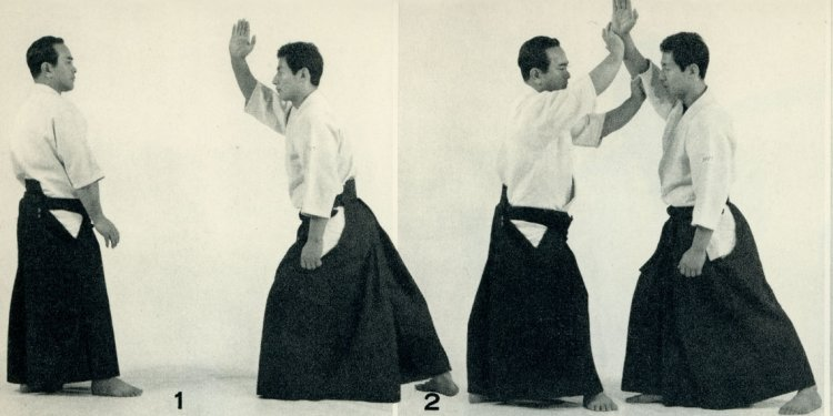 """The Origins of Modern Aikido:"