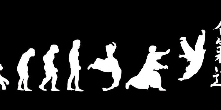 Aikido Martial Arts Japan