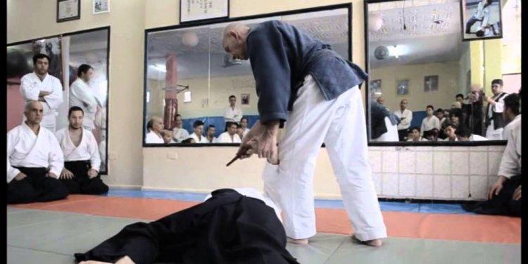 Extrait stage aikido avec Nebi