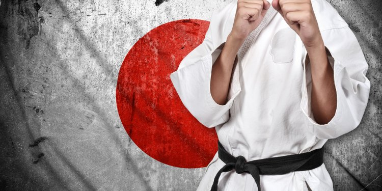 Japanese Jujitsu/Judo Program