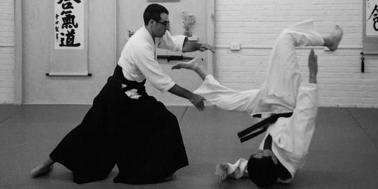 KARMABrooklyn Blog: AIKIDO