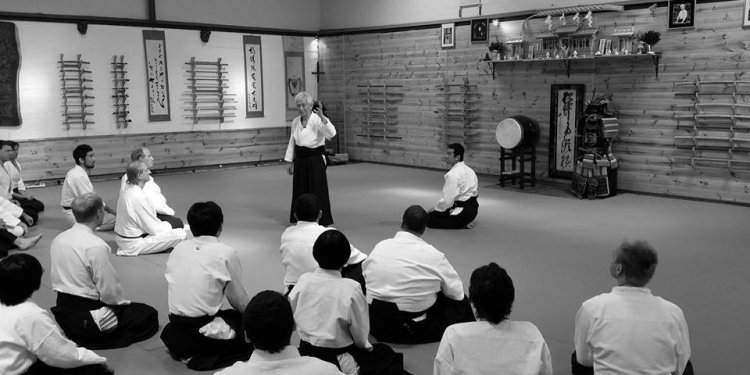 This year s Aikido Yuishinkai