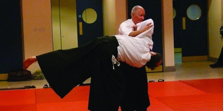 Aikido is a very refined