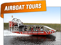 Everglades Airboat Tour and Everglades Airboat Ride