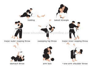 examples of holds and throws