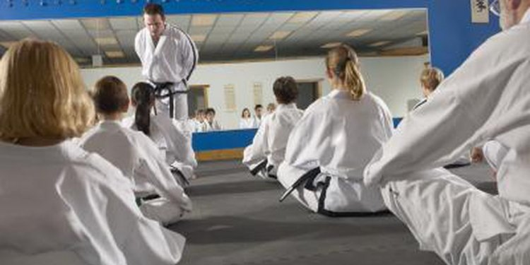 most popular martial arts in usa