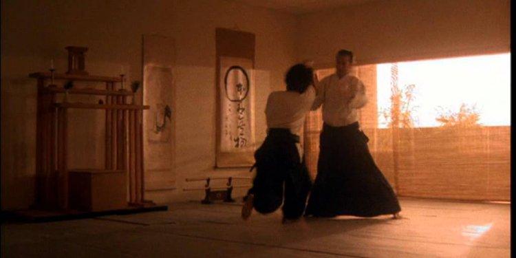 Steven Seagal Sports Martial Arts