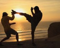 Chinese martial arts VS Japanese martial arts