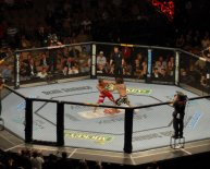 Mixed Martial Arts Wiki